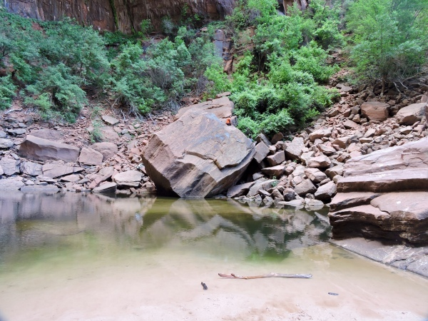 See that orange dot? That's me. Upper Emerald Pool, Zion National Park, UT.