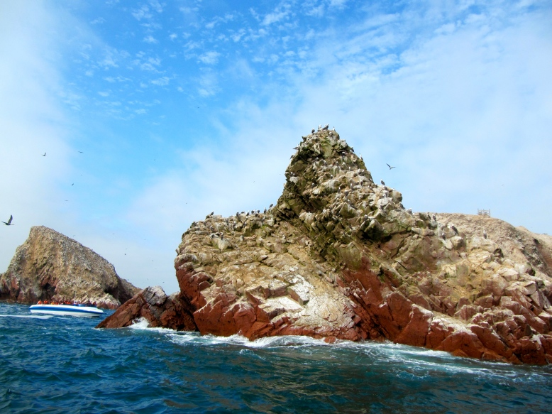 One of the bird islands in Islas Ballestas near Paracas.