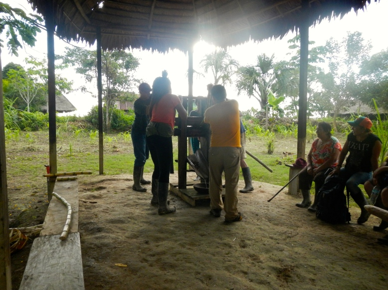 Working together to make sugar cane juice - the natural way.